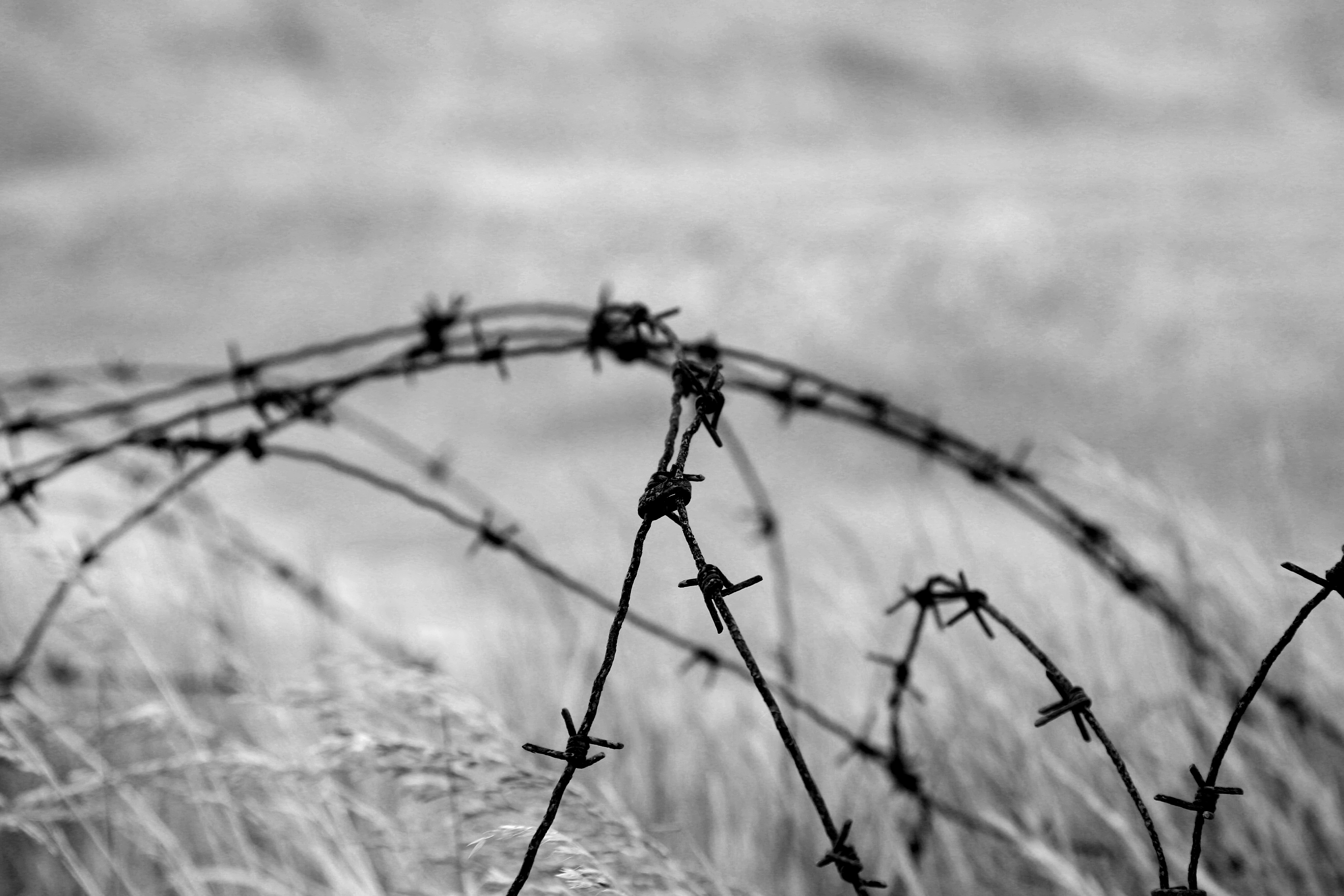 Normandy Wire