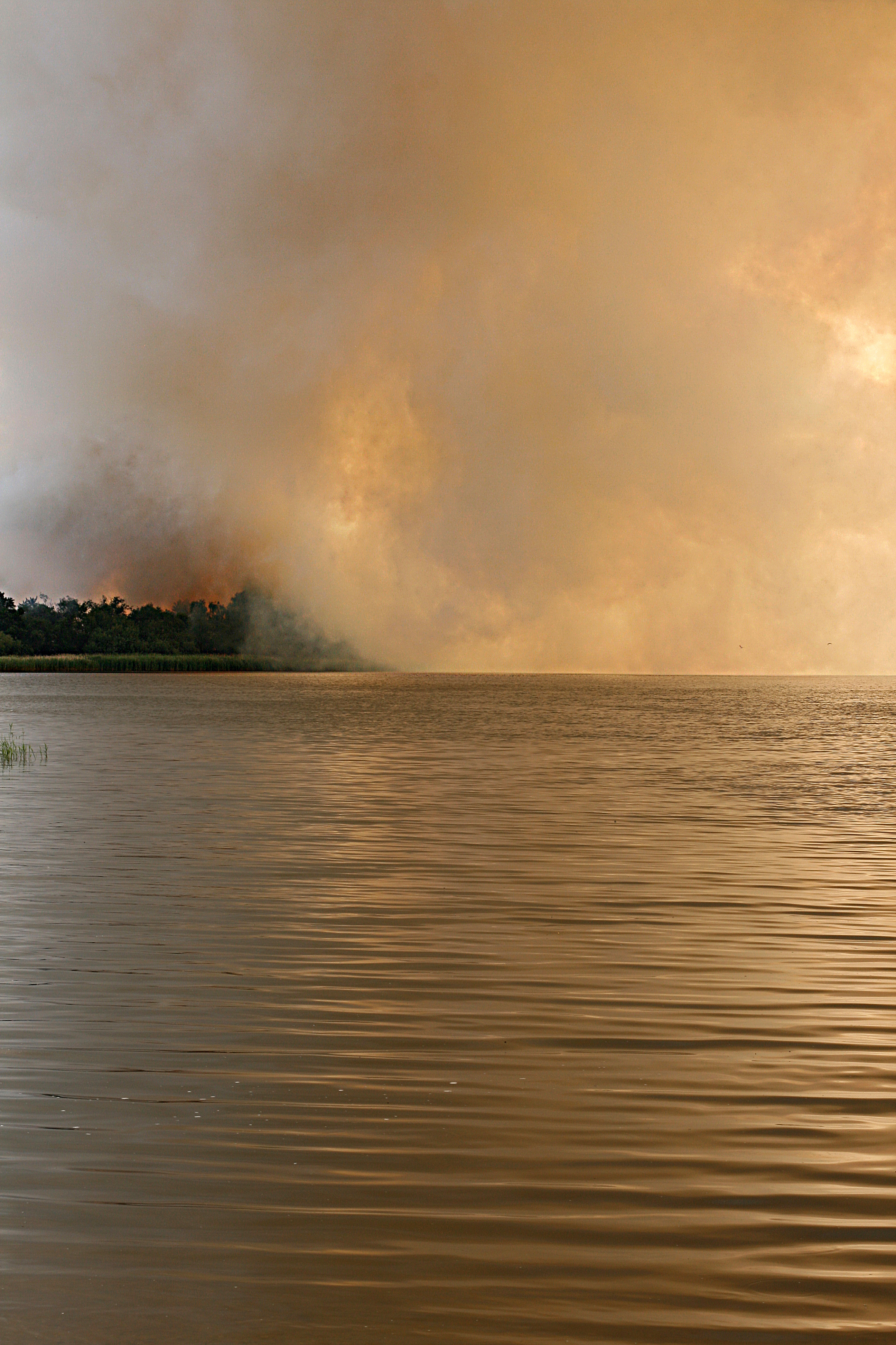 Wild Fire Smoke Over a Lake in Surrey, England.